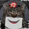 Кошкосмайлы / Cat Smiles
