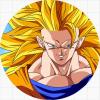 Goku transformations
