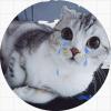 Плаки(99(9(( / Cries